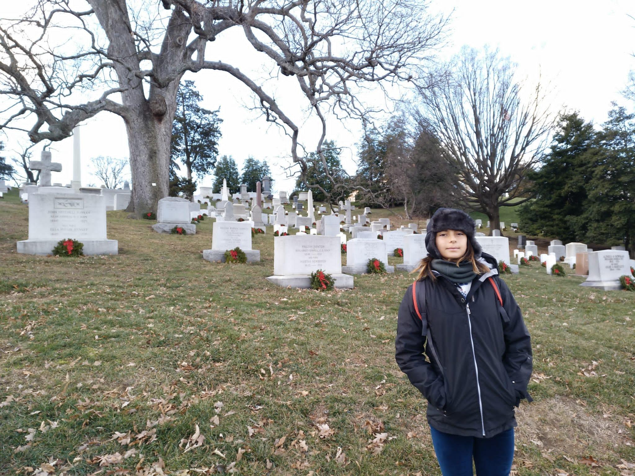 tumbas - cementerio - arbol - arlington