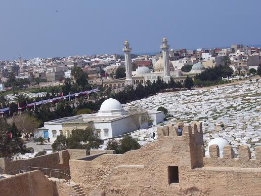 minaretes - cúpulas - cementerio - túnez - fortaleza