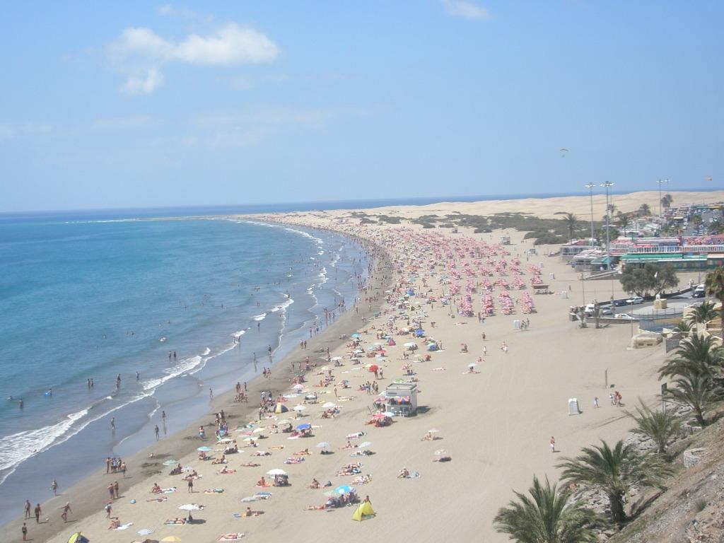 mar - playa - arena . turismo - palmeras