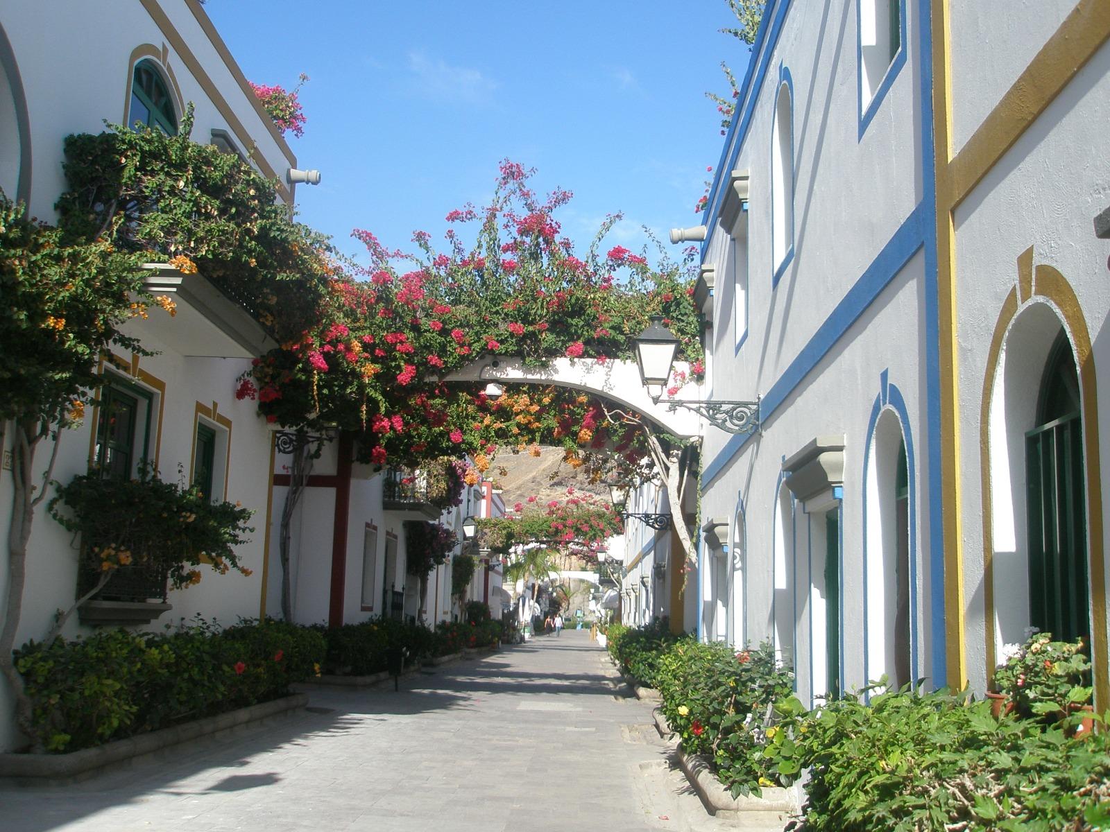 calle - casas - buganvillas - fachadas - flores