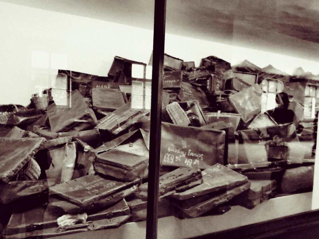 escaparate - exposición - maletas
